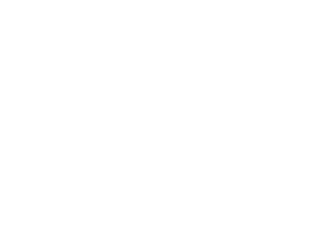 abc-white-title-partner