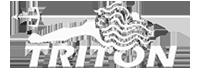 sponsor-triton
